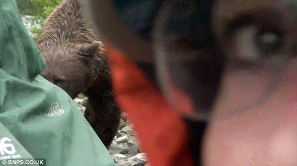 从这张照片的一角能够看到一位女子惊恐万分的眼睛,此时那头熊正在嗅另一个人