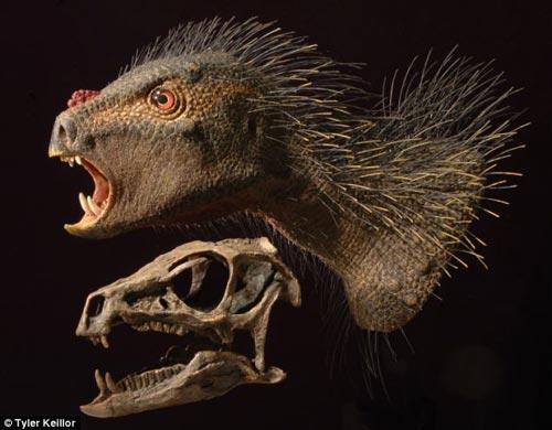 鹦鹉头箭猪恐龙