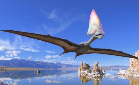 罗马尼亚Sebes地区还发现了翼龙的化石,它是历史上最大的飞行爬行动物