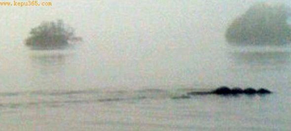 """IT 公司员工汤姆・皮科勒斯在温德米尔湖拍到的""""鞠躬尼斯""""照片。"""