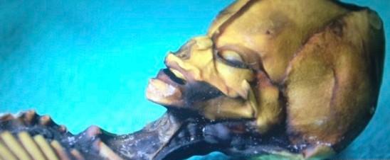 智力荒漠现外星人尸体 视频流出网络引争议