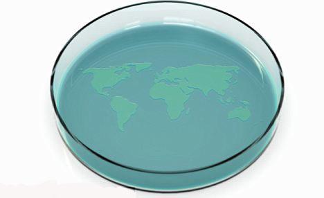 细胞进行竞赛的实验器皿