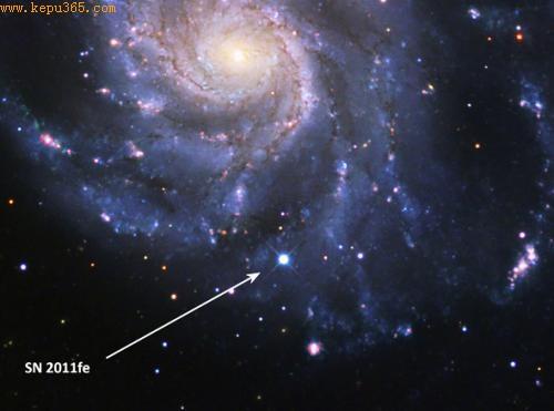 """位于北斗七星的SN 2011fe超新星被科学家称为""""标准超新星"""",有助于揭晓长期困扰科学家的超新星之谜"""