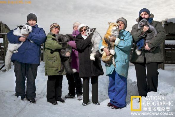 研究人员把狐狸抱在怀中,这里狐狸经过多代繁殖后,变得像狗一样与人友好