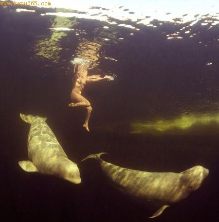 纳塔莉亚裸体潜水的地方是一片被围堵的海域,阻止鲸鱼和海豚逃跑